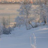 Утро у залива. :: Владимир Стаценко