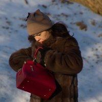 Женская сумочка - Бермудский треугольник. :: Анатолий. Chesnavik.