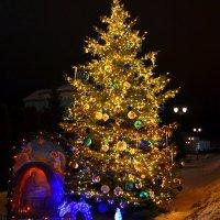 Рождество в Дивеево. :: Aлександр **