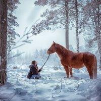 В зимнем лесу :: Татьяна Пахомова