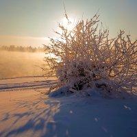 Полуденное солнце над рекой :: Анатолий Иргл