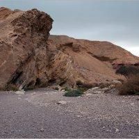 По дороге в Красный каньон. :: Lmark