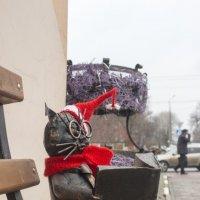 Сидит на лавке кот ученый... :: Михаил Почкалов-Семченков