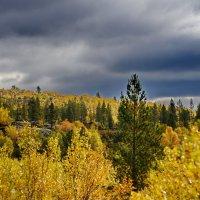 Осень, Мурманск :: вадим измайлов