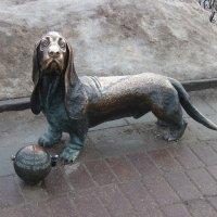 Пожарный пёс Бобка :: Дмитрий Солоненко