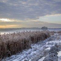 Озеро Круглое. Декабрь. :: Cергей Павлович