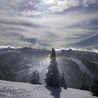 Зимний день... :: Liliya