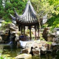 Китайский сад :: Раиса Шиллимат