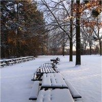 Зима :: Alexander Hersonski