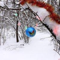 Пусть новогоднее настроение не покинет долго вас! :: Андрей Заломленков