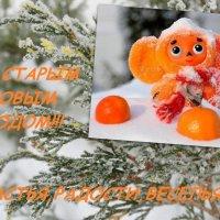 ПОЗДРАВЛЯЮ!!! :: Тамара (st.tamara)