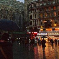 Дождливый вечер в Вене :: Галина
