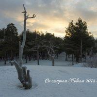 Всех друзей поздравляю со старым Новым годом! :: Владимир Шибинский