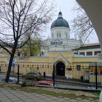 Женский монастырь Иоанна Предтечи. :: tatiana