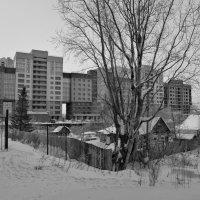 городские контрасты :: cfysx
