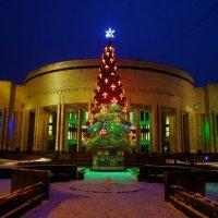 Елочка у Российской Национальной библиотеки... :: Sergey Gordoff