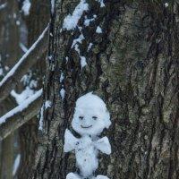 В Лосином Острове :: marmorozov Морозова