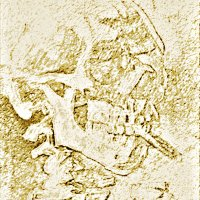 череп в позолоте :: Юлия Денискина