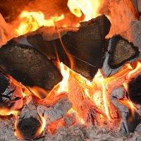 в тесной печурке огонь :: леонид логинов