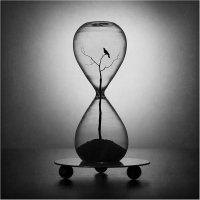 Часы с кукушкой :: Виктория Иванова
