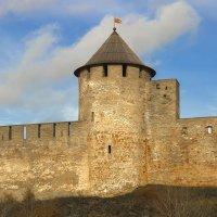 Сторожевая башня :: leo yagonen