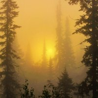 Восход в густом мареве тумана :: Сергей Чиняев