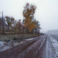 Осени мотивы. Октябрь... :: Александр Резуненко