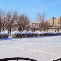 свежий снег :: vladimir polovnikov