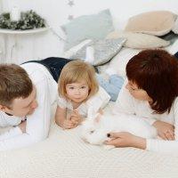 Семейная новогодняя фотосессия с кроликом :: Таня Турмалин
