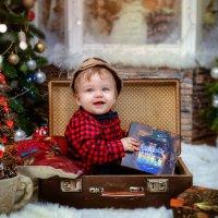 Рождественский подарок :: Татьяна Звада