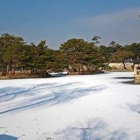 В декабрьском Сеуле :: Светлана