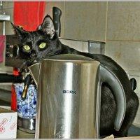 Чай? - Да забирайте с чайником! :: Vladimir Semenchukov