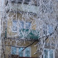 Мороз рисует узоры :: Елена Семигина