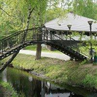 Горбатый мостик :: Елена Павлова (Смолова)