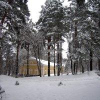 Зима :: Victor SVT