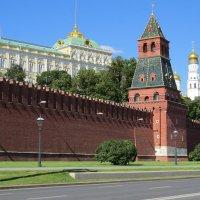 Кремль. Москва :: Вера Щукина