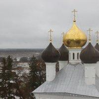 Купола Троицкой церкви :: Дмитрий Солоненко