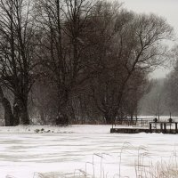 Снегопад на Озере. :: Марина Харченкова