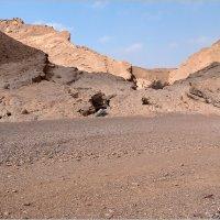 Пустыня Негев, Израиль. :: Lmark