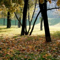Осень на Звездном бульваре :: Елена Аксамит