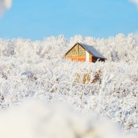 Зимняя сказка (2) :: Полина Потапова