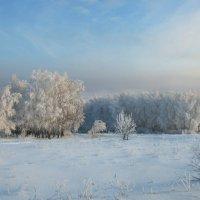 Красавица зима_2 :: Михаил Пахомов