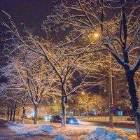 Зимняя ночная улица :: Сергей Тарабара