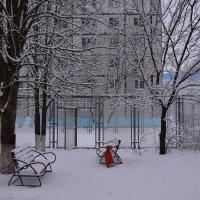 Долгожданный снег! :: Елена Иванова
