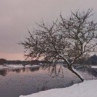 Зимний вечер :: AstaA