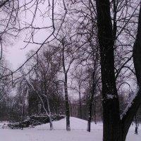 Зимние зарисовки. (Январь 2018 год). :: Светлана Калмыкова