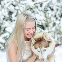 зимняя фотосессия с хаски :: Наталья