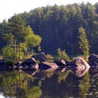 Лесное озеро :: Светлана