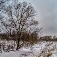 Зима в Дрезне 2 :: Андрей Дворников