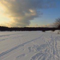 После Крещения зима похожа на зиму :: Андрей Лукьянов